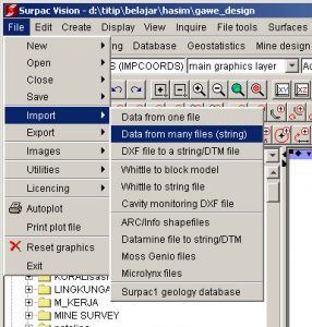 Import file database bor di Surpac